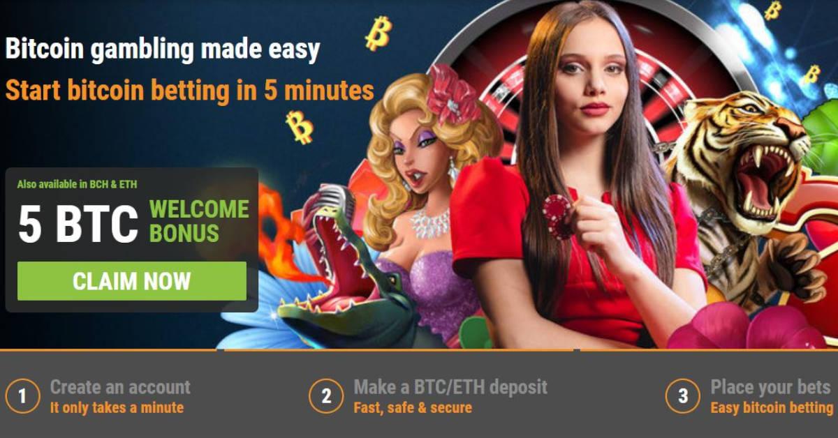 Bitcoin casino on net